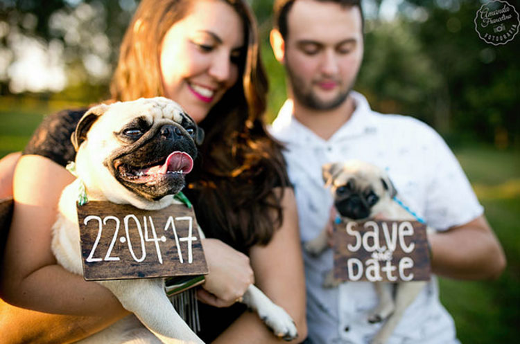 Ensaio_Pam_Gui_pet_save_the_date5