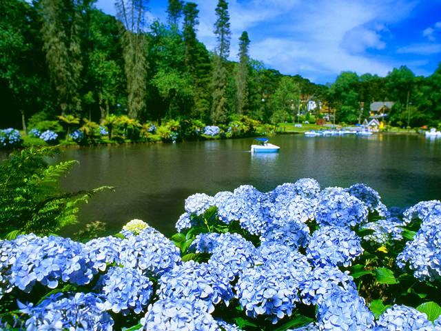 Lua de mel em Gramado – Rio Grande do Sul
