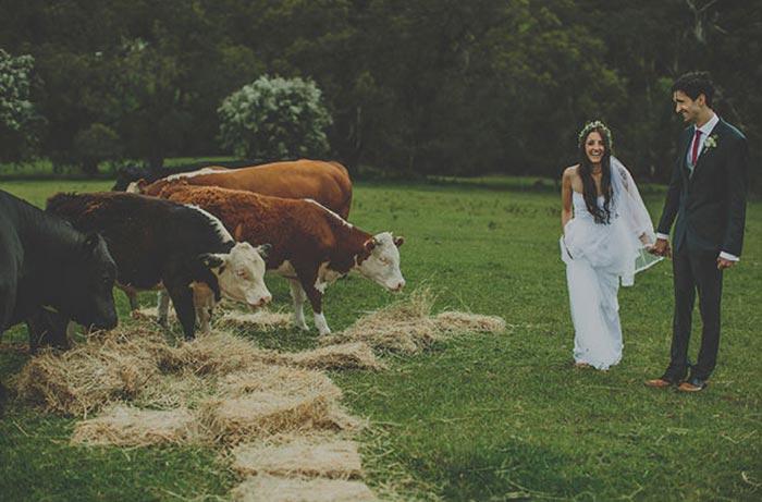 Barn_wedding_casamento_celeiro16