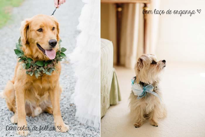 Cachorros_casamento1