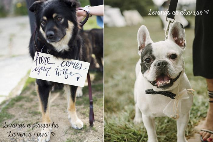 Cachorros_casamento2