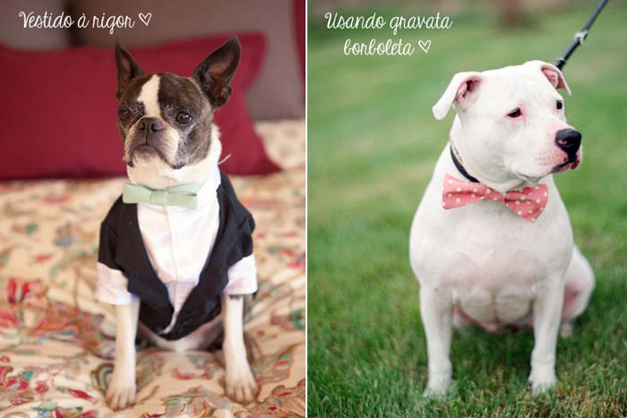 Cachorros_casamento3