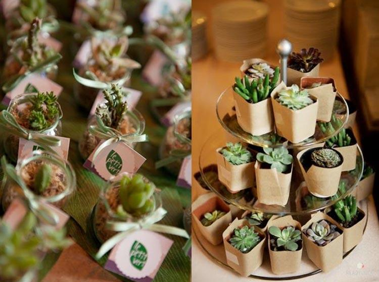 Lembrancinha_de_casamento_plantas