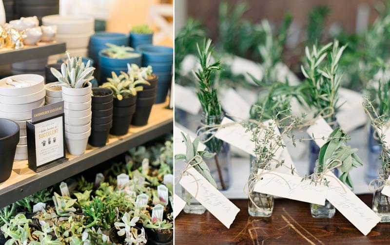 Lembrancinhas de casamento: 20 ideias para oferecer plantinhas para seus convidados