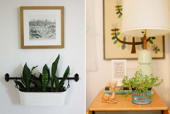decoracao_da_casa_com_plantas10