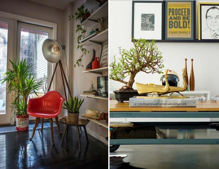 decoracao_da_casa_com_plantas4