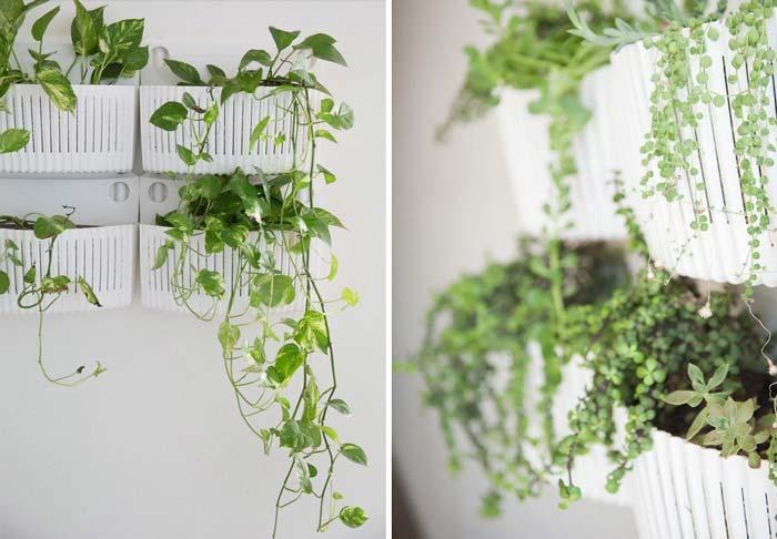 decoracao_da_casa_com_plantas5