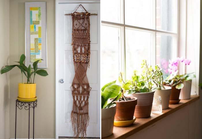 decoracao_da_casa_com_plantas7