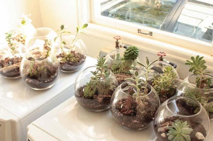 decoracao_da_casa_com_plantas8