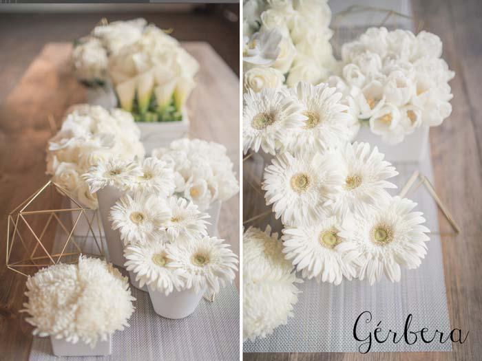 flores_da_primavera11