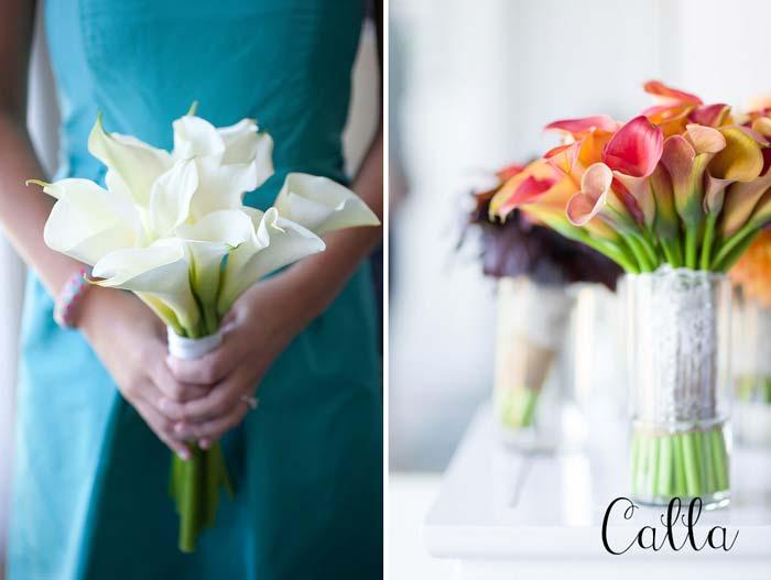 flores_da_primavera8